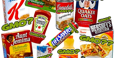 GMO ingredient list processed foods
