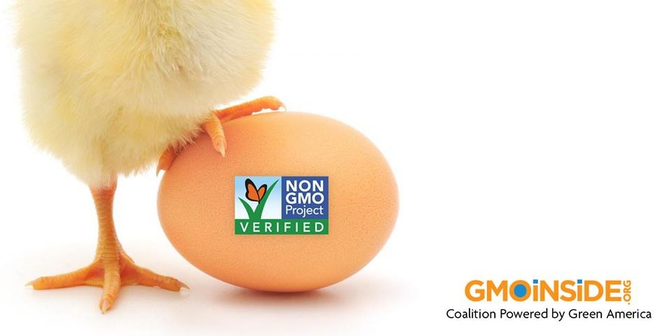 Non GMO project verified chick and egg - La Vie En Green